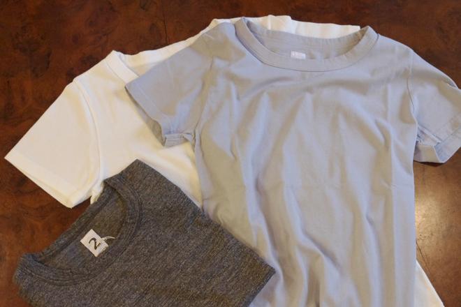 KINOTTO_Tシャツ1