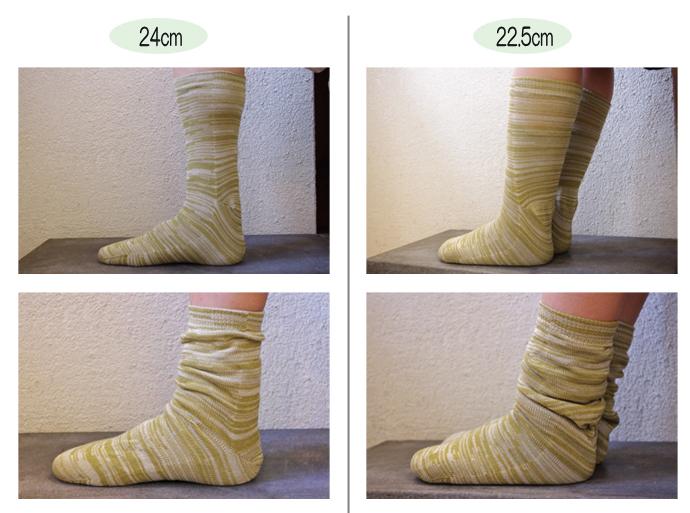 正活絹サイズ比較5
